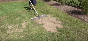 lawn leveling portland oregon