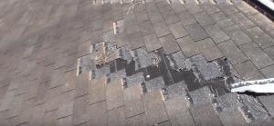 wind storm damage repair roof shingles restoration